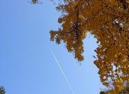 秋の訪れを感じて🍂